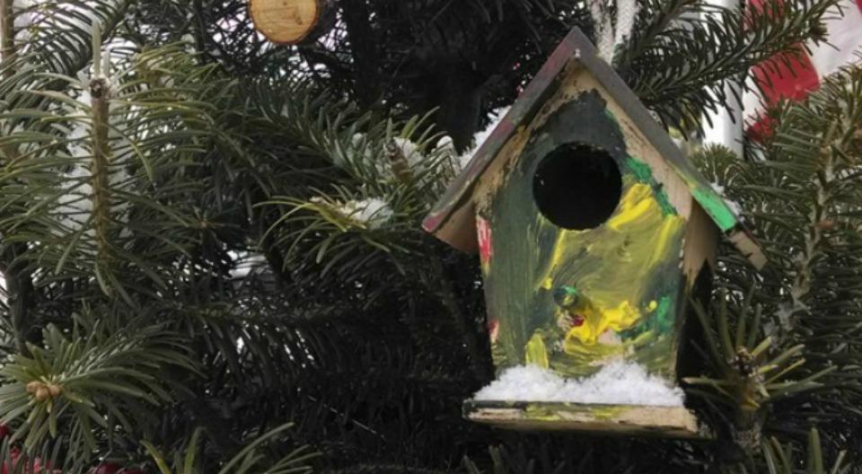 EvergreenValley Christmas Tree Farm